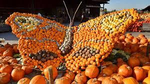 Stone Mountain Pumpkin Festival by Best 28 Things To Do U0026 See In Zurich Switzerland U2013 Activities