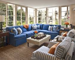 36 Best Blue Couch Cohabitation Images On Pinterest