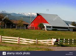 Red Barn And White Fence On The Olympic Pensinula Washington USA ... Red Barn Washington Landscape Pictures Pinterest Barns Original Boeing Airplane Company Building Museum The The Manufacturing Plant Exterior Of A Red Barn In Palouse Farmland Spring Uniontown Ewan Area Usa Stock Photo Royalty And White Fence State Seattle Flight Interior Hip Roof Rural Pasture Land White Fence On Olympic Pensinula