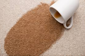 Remove Blood Stain From Carpet by 4 Steps To Remove Red Wine Stains From Carpet