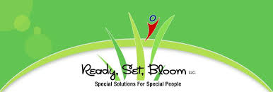 Nickel Bed Tent by Ready Set Bloom Llc Company Chesterfield Missouri 66