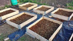 Raised Beds Ready For Woodchip