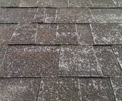 voguish black roof est black roof shingles home depot in black