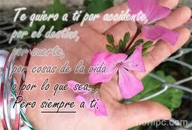 Siempre Te Voy A Querer Garden by Frases Para Dos Separados Y Distantes Pero Que No Se Olvidan