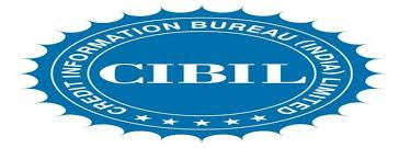information bureau credit information bureau india limited customer care delhi