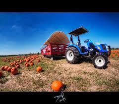 Best Pumpkin Patch Austin Texas by The 10 Best Pumpkin Patches In Texas In 2016