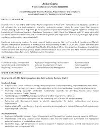Investment Banker Resume Sample Banking Analyst Business Bank Experienced