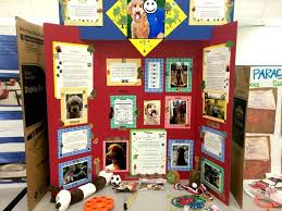 75 Science Fair Project Ideas