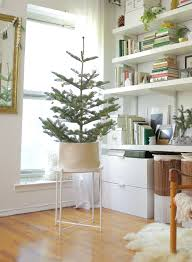 100 Tree Branch Bookshelves Christmas Ideas For Small Spaces Apartment Therapy