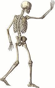 Skeleton Waving Goodbye