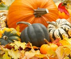 Nh Pumpkin Festival Laconia Nh by Fall And Foliage Festivals In Nh