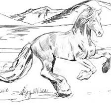 Horse Jumping Coloring Pages Save Realistic Page Free Library