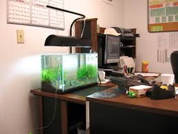 Office Fish Tank Entryway Furniture Ideas Pumpkin Painting Designs ... Cuisine Okeanos Aquascaping Custom Aquariums Fish Tanks Ponds Aquarium Design Group Aquarium Modern Awesome Home Photos Decorating Ideas Office Tank Dental Vastu Location Coffee Table For Sale Beautiful Fish Tank Designs Dawnwatsonme For Luxury Townhouse In Ldon Best Designs And Landscaping Including Fishy Business Cool Images Inspiration Tikspor