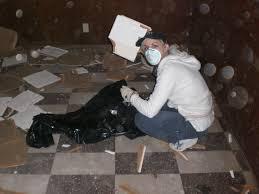 asbestos floor tiles removal gallery tile flooring design ideas