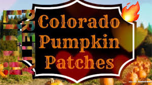Colorado Pumpkin Patches 2017 by At The Pumpkin Patch Youtube