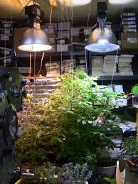 post your grow light setup