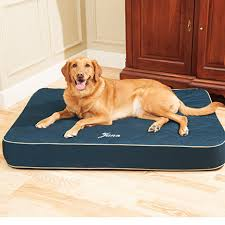 drs foster smith quilted super deluxe dog bed drsfostersmith com