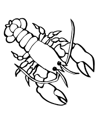 Sea Creatures Printables Life Animals Coloring Pages