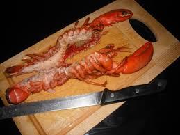comment cuisiner les encornets surgel駸 comment cuisiner les calamars surgel駸 28 images comment
