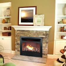 Indoor Propane Fireplace Heaters Burning Insert Electric Fireplace