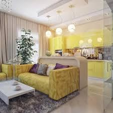 küche kombiniert mit einem wohnzimmer in einer kleinen