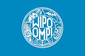 wipo international bureau international organizations n w