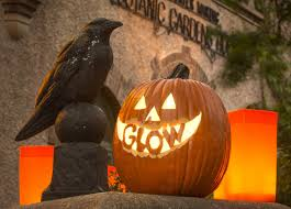 Pumpkin Patch Chatfield Denver by Glow At The Gardens Denver Botanic Gardens Community Events