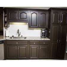 Nuvo Cabinet Paint Video by 39 Best Liquid Stainless Steel Appliance Paint Images On