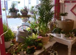 vitrine fete des meres fleuriste 1ere fête des grand mères la fontaine fleurie