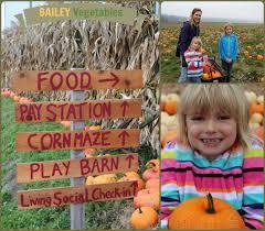 Snohomish County Pumpkin Patches by Corn Maze U0026 Pumpkin Patch Seattle Weekend