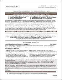 Example Vice President Resume For An Executive Candidate 12 Operations Associate Job Description Proposal Resume Examples And Samples Free Logistics Manager Template Mplates 2019 Download Executive Services Professional Food Templates To Showcase Example Vice President For An Candidate Retail How Draft A Sample Restaurant Fresh Educational Director Of 13 Transportation