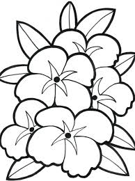 Rose Flower Coloring Pages For Adults Free Printable Pdf Download