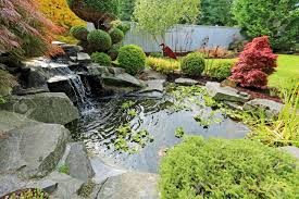 Tropical Landscape Design On Backyard. View Of Small Pond, Trimmed ... Ese Zen Gardens With Home Garden Pond Design 2017 Small Koi Garden Ponds And Waterfalls Ideas Youtube Small Backyard Design Plans Abreudme Backyard Ponds 25 Beautiful On Pinterest Fish Goldfish Update Part 1 Of 2 Koi In For Water Features Information On How To Build A In Your Indoor Fish Waterfall Ideas Eadda Backyards Terrific