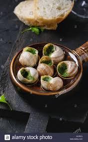 cuisiner les escargots de bourgogne escargots de bourgogne snails with herbs butter gourmet dish