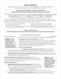 Information Technology Resume Examples No Experience Carpenter Sample Of In Executive