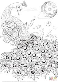 Peacock Coloring Pages Graceful Peacock Coloring Page Free