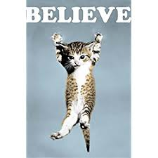 Believe Cat Poster Art Print Wall 20 Inch By 30
