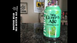 Dogfish Pumpkin Ale 2017 by Dogfish Head Seaquench Ale Beer Review Youtube