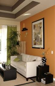 Brown Living Room Decorating Ideas by Best 25 Orange Accent Walls Ideas On Pinterest Paint Ideas For