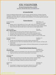 Sample Resume For Government Position Luxury Federal Examples Positions