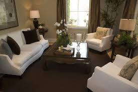 Dark Carpet Living Room Ideas Brown On Apartment Decor