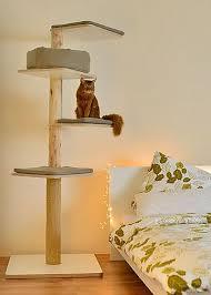 ein design kratzbaum stylecats damit sie und ihre