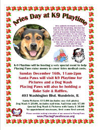 Il Lottery Halloween Raffle 2014 by Placing Paws