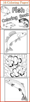 Fish Coloring Book 16 Pages Christianhomeschoolhub