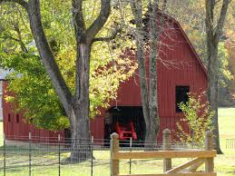 Image Detail For -Bluff Area Daily: Old Barns (3) | Love Of Old ... 139 Best Barns Images On Pinterest Country Barns Roads 247 Old Stone 53 Lovely 752 Life 121 In Winter Paint With Kevin Barn Youtube 180 33 Coloring Book For Adults Adult Books 118 Photo Collection