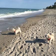 walton rocks beach 98 photos 14 reviews dog parks 6700 s