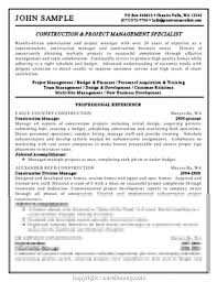 100 Assistant Project Manager Resume Executive Sample For Construction
