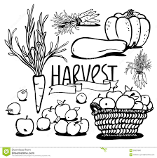 Basket Ve ables Clipart Black And White