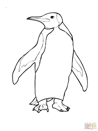 Click King Penguin Coloring Club Book Sheets Printable Pages Free Full Size
