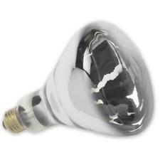 r40 light bulbs ebay